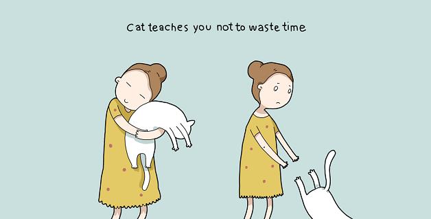 cat10 (1)