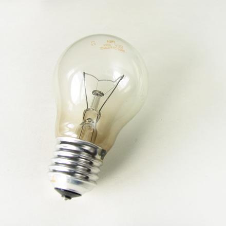 bulb-1558222