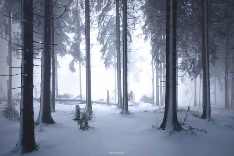 O-fotógrafo-alemão-Kilian-Schonberger-07